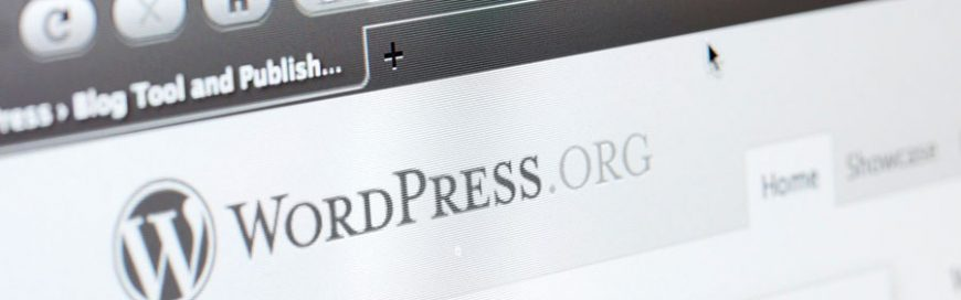 Wordpress Updates can cause problems with your site's theme